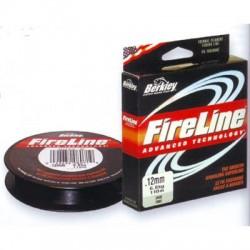 Fireline 270 Mt Berkley