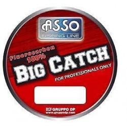 Big Catch 50 mt Asso